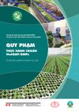 Quy phạm thực hành chuẩn VietGAP/GMPs: Chuỗi sản xuất kinh doanh rau tươi