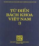 Bách khoa Việt Nam - Từ điển (Tập 3): Phần 1