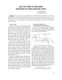 Một vài ý kiến về công trình dẫn dòng thi công dạng bậc nước - Vũ Thanh Te