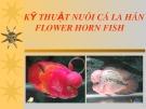 Bài giảng Kỹ thuật nuôi cá La Hán