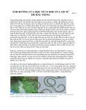 Ảnh hưởng của độc tố vi khuẩn Lam từ hồ Dầu Tiếng