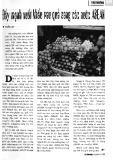 Đẩy mạnh xuất khẩu rau quả sang các nước ASEAN
