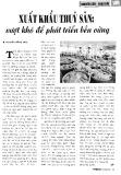 Xuất khẩu thủy sản: vượt khó để phát triển bền vững
