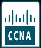 Tài liệu hướng dẫn thực hành CCNA: Bài 16 - Redistribute giữa Rip và IGRP
