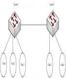 Tài liệu hướng dẫn thực hành CCNA: Bài 11 - Cấu hình VTP Password