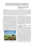 Ứng dụng năng lượng gió, xu thế chung và đánh giá dưới góc độ kinh tế và môi trường
