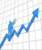 Ngoại giao Việt Nam trong tiến trình hội nhập kinh tế quốc tế