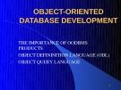 Object oriented database development