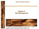 Decision Support Systems: Chapter 5 - Data Management