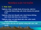 Bài giảng Nuôi cấy vi tảo