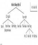 Các giai đoạn phát triển của Tiếng Việt - Nhiều Tác Giả
