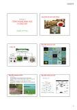 Bài giảng Chương 3: Công nghệ sinh học vi sinh vật