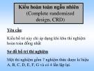 Bài giảng Kiểu hoàn toàn ngẫu nhiên (Complete randomized design, CRD)