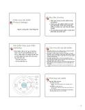 Bài giảng Nguyên lý Marketing: Chương 6 - Trần Hồng Hải