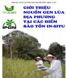 Ebook Giới thiệu nguồn gen lúa địa phương tại các điểm bảo tồn In-situ