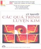 Giáo trình Lý thuyết các quá trình luyện kim: Phần 1