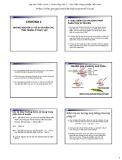 Bài giảng Di truyền thực vật đại cương: Chương 4 - Phạm Thị Ngọc