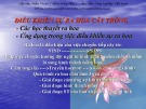 Bài giảng Điều khiển sự ra hoa của cây trồng