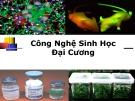 Bài giảng Công nghệ sinh học đại cương: Bài mở đầu - Nguyễn Thị Phương Thảo