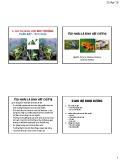 Bài giảng Chỉ thị sinh học môi trường: Chỉ thị sinh học môi trường nước (Phần 7: Ếch, nhái) - GS.TS. Nguyễn Thế Nhã