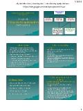 Bài giảng Chuyên đề Trồng cây trong dung dịch - Học viện nông nghiệp Việt Nam