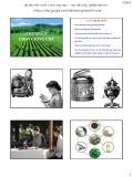 Bài giảng Chọn giống cây trồng dài ngày - Chương 5: Chọn giống chè