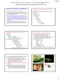 Bài giảng Côn trùng đại cương 1 - Chương 4: Phân loại côn trùng đến Bộ