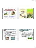 Bài giảng Bảo vệ rừng tổng hợp: Chương 4 - GS.TS. Nguyễn Thế Nhã