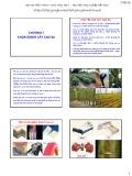 Bài giảng Chọn giống cây trồng dài ngày - Chương 7: Chọn giống cây cao su