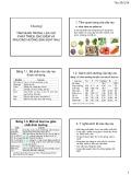 Bài giảng môn Cây rau