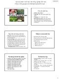 Bài giảng Chọn giống cây trồng dài ngày - Chương 1: Đặc điểm nông, sinh học của nhóm cây trồng dài ngày liên quan đến chọn giống (2015)