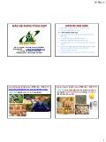 Bài giảng Bảo vệ rừng tổng hợp: Lịch sử quản lý dịch hại - GS.TS. Nguyễn Thế Nhã
