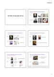 Bài giảng Nhập môn Công nghệ sinh học: Chương 1 - Nguyễn Vũ Phong
