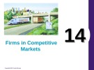 Lecture Principles of economics - Chapter 14: Firms in competitive markets