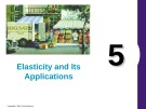 Lecture Principles of economics - Chapter 5: Elasticity and its applications