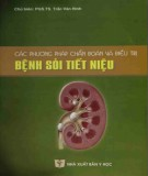 Ebook Các phương pháp chẩn đoán và điều trị bệnh sỏi tiết niệu: Phần 2