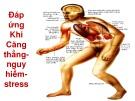 Bài giảng Hệ nội tiết - Lê Hồng Thịnh