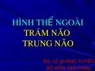 Bài giảng Hình thể ngoài trám não trung não - BS. Lê Quang Tuyền