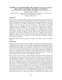 Nghiên cứu nuôi tôm thẻ chân trắng (Litopenaeus vannamei) siêu thâm canh trong hệ thống tuần hoàn