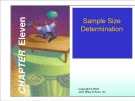 Lecture Marketing research - Chapter 11: Sample size determination