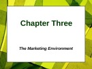 Lecture Principles of Marketing - Chapter 3: The marketing environment