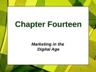 Lecture Principles of Marketing - Chapter 14: Marketing in the digital age