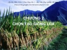 Bài giảng Chọn tạo giống cây trồng ngắn ngày: Chương 2 - Học viện Nông nghiệp Việt Nam
