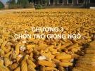 Bài giảng Chọn tạo giống cây trồng ngắn ngày: Chương 3 - Học viện Nông nghiệp Việt Nam