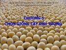 Bài giảng Chọn tạo giống cây trồng ngắn ngày: Chương 8 - Học viện Nông nghiệp Việt Nam