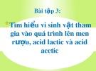 Bài thuyết trình: Tìm hiểu vi sinh vật tham gia vào quá trình lên men rượu, acid lactic và acid acetic (Bài tập 3)