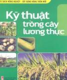 Ebook Kỹ thuật trồng cây lương thực: Phần 2