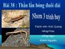 Bài thuyết trình bài 38: Thằn lằn bóng đuôi da