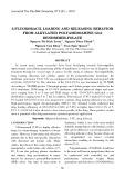 5-Fluororacil loading and releasing behavior from alkylated polyamidoamine G3.0 dendrimer-folate