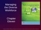 Lecture Management: Leading and collaborating in a competitive world - Chapter 11: Managing the diverse workforce